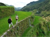 TerracedRiceFields-Luzon-Philippines